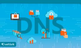 Como Usar o Editor de Zona DNS da WebLink