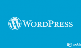 As vantagens de usar o WordPress