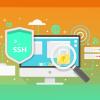 guia básico para aprender o que é SSH
