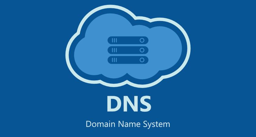 dns weblink