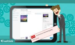 Erro de HTTP WordPress: o que é e como corrigir