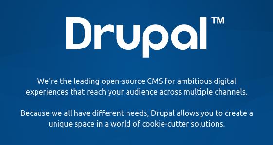 cms drupal para publicar um site na web