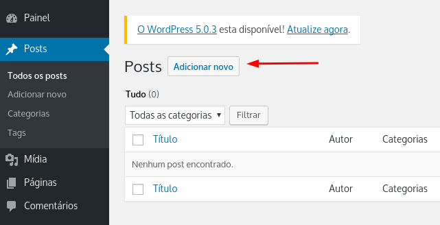 adicionar novo post no wordpress