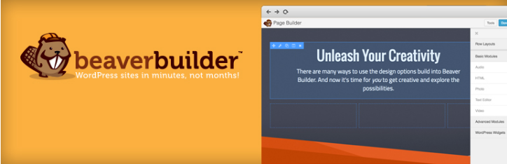 plugin beaver builder para construir sites