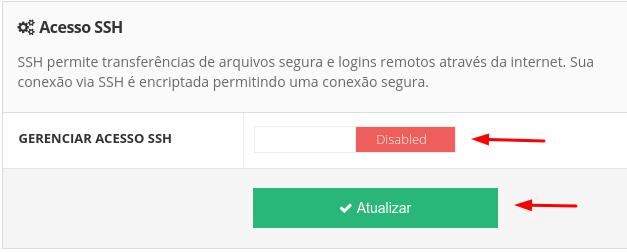 ativar acesso ssh na hospedagem