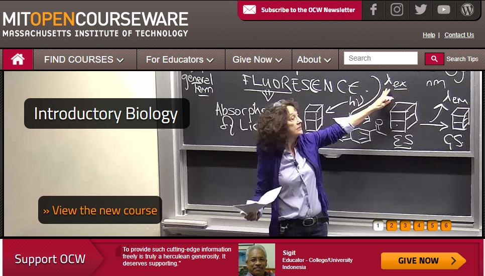 cursos online de programação do MIT